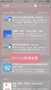 iPhoneウィジェット画面で検索